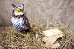 Decorative owl near stack of books royalty free stock images