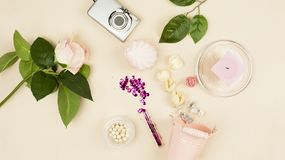 Decorative pail, paint, dried flowers, glitter, camera, roses on a light background. Still life Royalty Free Stock Image