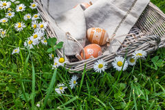 Decorative painted Easter eggs in basket in nature Royalty Free Stock Image