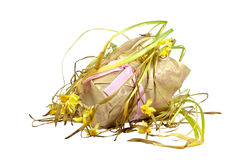 Decorative Paper Covered Pot of Dying Yellow Daffodils Royalty Free Stock Image