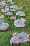 Decorative path across the lawn composed of stumps.  Stock Images