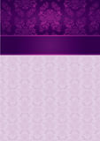 Decorative Pattern and Frame template Stock Photography