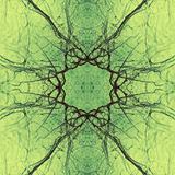 Decorative pattern, interlaced lines, the combination of fragments of images. Stock Photography