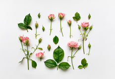 Decorative pattern with pink roses, leaves and buds on white background. Flat lay, top view Stock Image