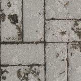 Decorative paving slabs. Exterior finishing. royalty free stock image