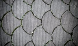 Decorative paving tile. background, texture, pattern. Stock Photo