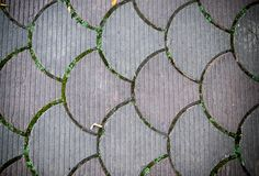 Decorative paving tile. background, texture, pattern. Royalty Free Stock Photos
