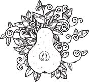 Decorative pear Stock Image
