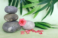 Decorative pebbles stacked in zen life fashion with a pink flower on green and foliage background Royalty Free Stock Image