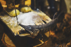 Decorative pike from wood Royalty Free Stock Images