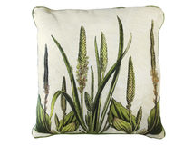 Decorative pillow with natural pattern Stock Image