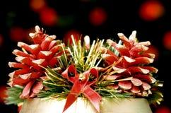 Decorative pine-cones Stock Photo