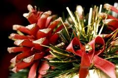 Decorative pine-cones Stock Images