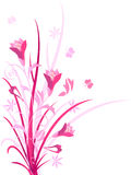 Decorative pink color floral,  illustration Stock Photos