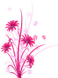 Decorative pink color floral,  illustration Royalty Free Stock Images