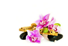 Decorative pink Orchid flowers. Decorative pink Orchid flowers with black stones massage on a white background with bamboo stock photo