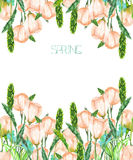 A decorative place (banner) with an ornament of the watercolor spring pink flowers for a text, wedding invitation Royalty Free Stock Images