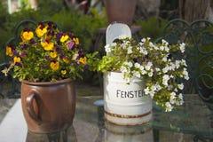 Decorative plant pots Stock Image