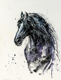 Black Fresian horse watercolors painted. royalty free stock images