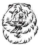 Decorative portrait of Chow Chow Dog vector illustration. Decorative outline portrait of Chow Chow Dog looking in profile, vector illustration in black color royalty free illustration