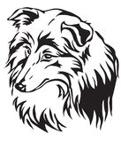 Decorative portrait of Dog Sheltie vector illustration royalty free illustration