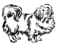 Decorative standing portrait of dog Pekingese vector illustration. Decorative portrait of standing in profile Pekingese, vector isolated illustration in black royalty free illustration