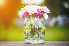 Decorative posy of fresh pink summer flowers. In a glass vase on an outdoor wooden table viewed close up on the side with golden glow from the sun Royalty Free Stock Photo