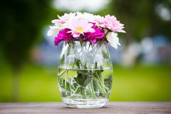 Decorative posy of fresh pink summer flowers. In a glass vase on an outdoor wooden table viewed close up on the side Stock Images