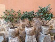Decorative pots on the street royalty free stock photo