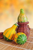 Decorative pumkins Royalty Free Stock Photography