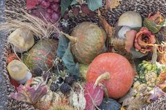 decorative pumpkin στοκ εικόνα