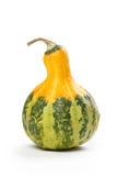 Decorative pumpkin Stock Images