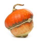 Decorative pumpkin Stock Photo