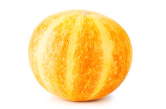 Decorative pumpkin Royalty Free Stock Photo