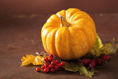 Decorative pumpkin and autumn leaves for halloween Royalty Free Stock Photography
