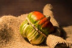 Decorative pumpkin. Colorful decorative pumpkin on gunny background Royalty Free Stock Image
