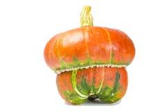 Decorative pumpkin. Colorful decorative pumpkin on white background Stock Photography