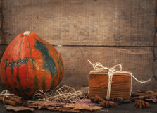 Decorative pumpkin and gift box Stock Images