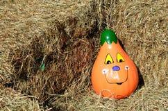 Decorative pumpkin gourd Stock Photos