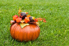 Decorative pumpkin on green grass Royalty Free Stock Photography