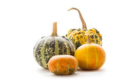 Decorative pumpkin isolated Royalty Free Stock Photos