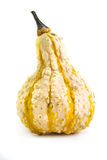 Decorative Pumpkin Stock Photo