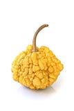 Decorative pumpkin Royalty Free Stock Photography