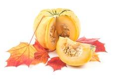 Decorative pumpkin on yellowed maple leaves Stock Image
