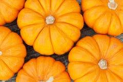 Decorative pumpkins. Closeup image of miniature decorative pumpkins Stock Photography