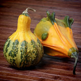 Decorative pumpkins Stock Photos
