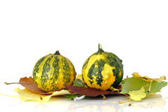 Decorative pumpkins and autumn leaves Royalty Free Stock Photos