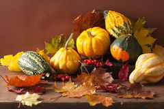 Decorative pumpkins and autumn leaves for halloween Royalty Free Stock Images
