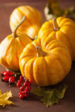 Decorative pumpkins and autumn leaves for halloween Royalty Free Stock Photos