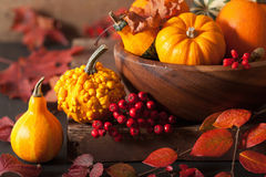 Decorative pumpkins and autumn leaves for halloween Royalty Free Stock Image